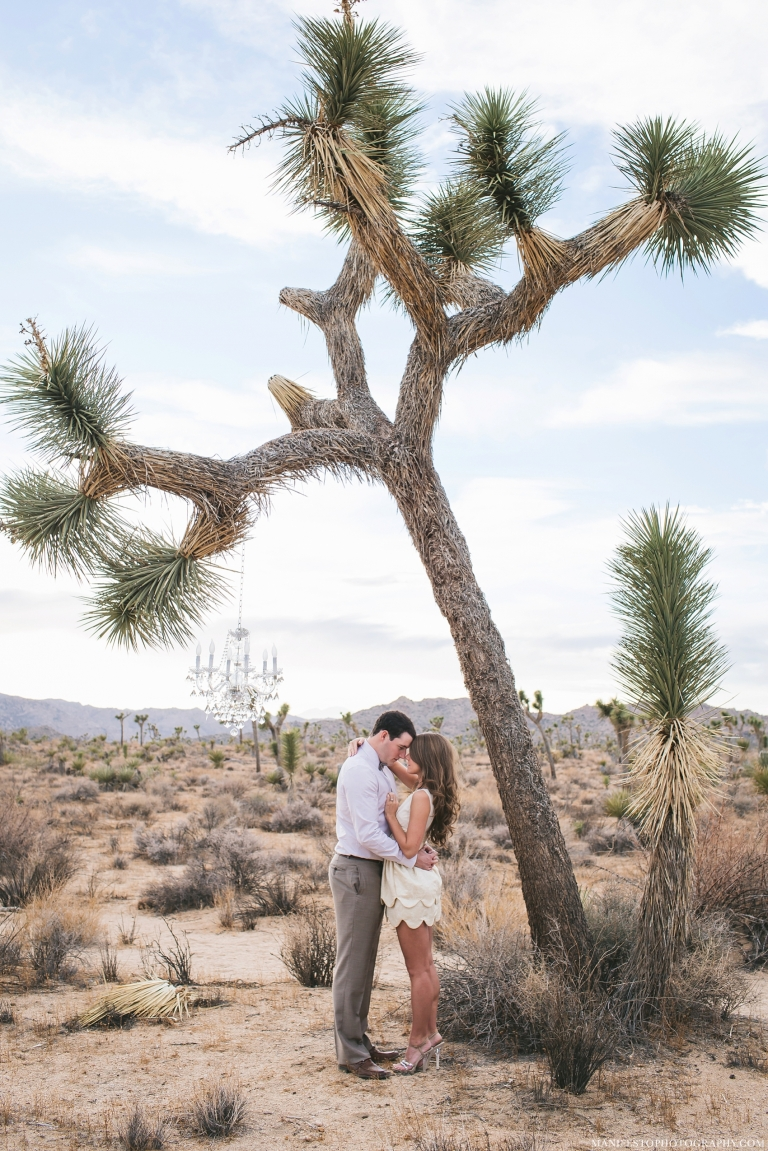 Joshua Tree National Park | Destination Engagement Photographers | Manifesto Photography | Joshua and Arica Klassen
